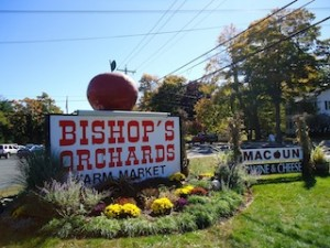 Bishop's Orchard photo