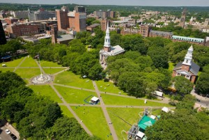 new haven green picture