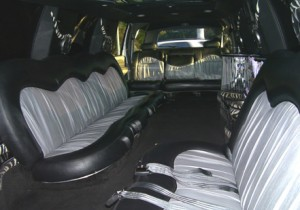 hamden limo excursion photo