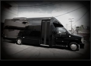 24 Passenger Black Party Bus